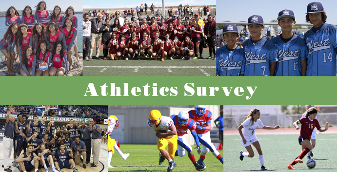 Athletics Survey 2017